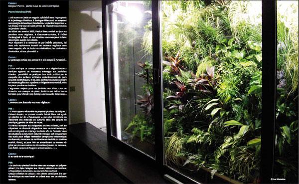 Article sur ChaucunSaGraine dans le Magazine Cosmoponia